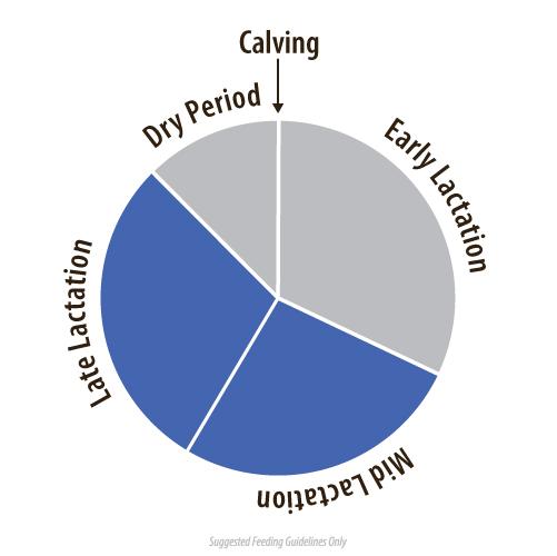 dnv-341-dairy-graphs-spring