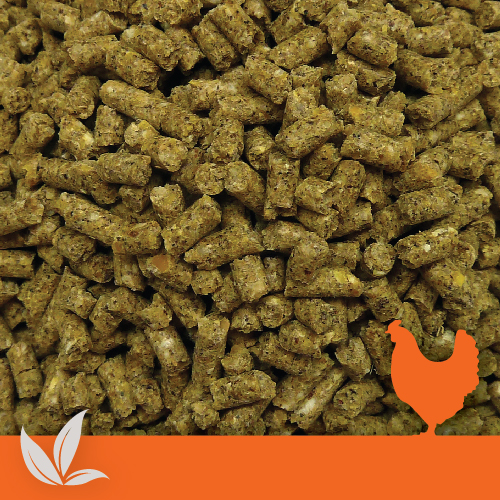 Organic Poultry Layer Pellets Denver Stock Feeds